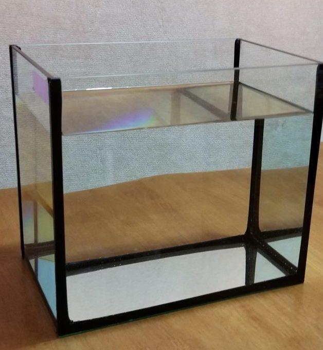 人工海水が入ったガラス水槽