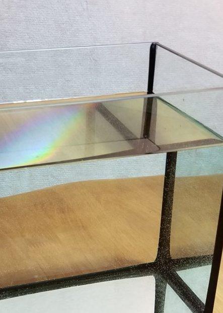 GFG顆粒を規定量の半分混ぜたガラス水槽の人工海水