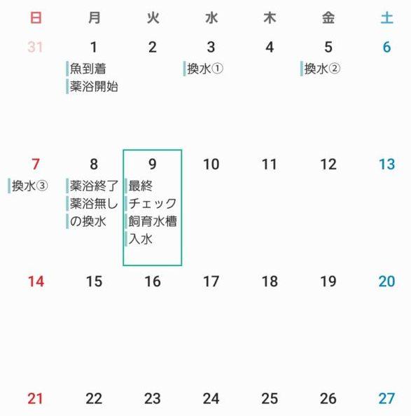 仮に作ったトリートメント日程表カレンダー